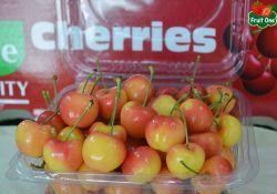 Cherry - quà tặng trái cây cao cấp cho dịp lễ tết
