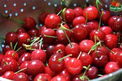 """Cherry Úc tràn lan thị trường có thực sự là trái cây nhập khẩu """"xịn""""?"""
