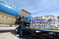 Cơn sốt hàng trái cây nhập khẩu về Việt Nam được vận chuyển đường hàng không.