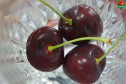 Giá quả cherry Úc nhập khẩu hiện nay bao nhiêu?