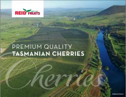 Hộp quà cherry Tasmanian món quà tặng ý nghĩa cho dịp Tết 2018