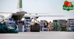 Sự khác nhau giữa trái cây nhập khẩu vận chuyển đường biển và hàng không