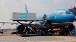 Sự khác nhau giữa trái cây nhập khẩu vận chuyển đường hàng không và vận chuyển container