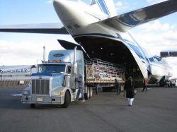 Trái cây nhập khẩu được vận chuyển bằng đường hàng không về Việt Nam tại FruitOne